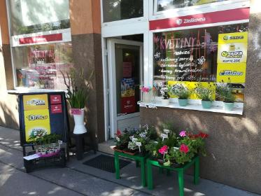 Pobočka Brno, Gajdošova 56 a (Květiny JS)